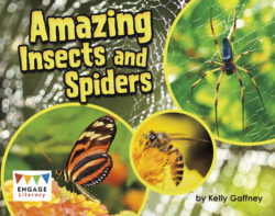 Amazing Insects and Spiders (Engage Literacy Turquoise)