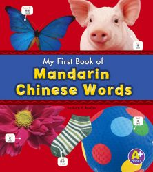 Bilingual Picture Dictionaries - Mandarin Chinese Words
