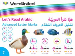 Let's Read Arabic - Advanced Letter Marks