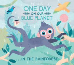 One Day on Our Blue Planet in the Rainforest (Flying Eye Picture Book - Hardcover)