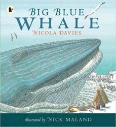 Walker Books - Big Blue Whale (Nature Storybooks - Nicola Davies)